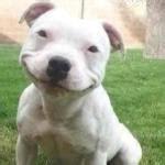 Fapstronaut 9