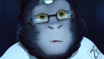 Enhance Monkey