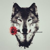 Lone Wolfe
