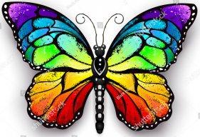 Butterlfly