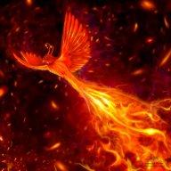 fire.bird