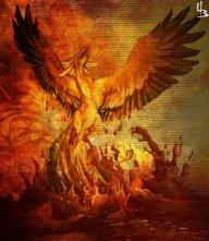 Phoenix666