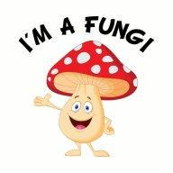MushroomIsGrowing