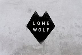 Lone wolf...