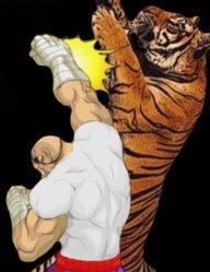 tiger-uppercut!
