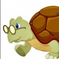 Turtle83