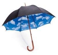 Open Parasol