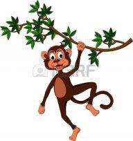 monkey.man