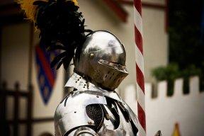 Sobriety Knight